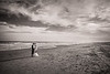 Wedding Landscape, Galveston TX